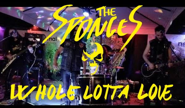 The Sponges – Whole Lotta Love